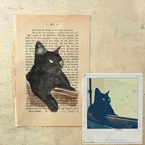 Pet Memorial Ideas Unique Cat image