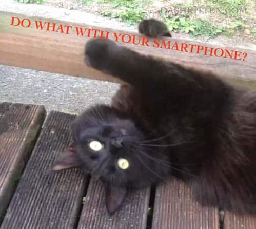 Learn about smartphone apps