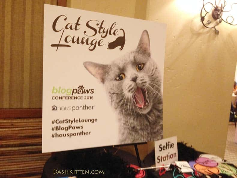 BlogPaws Cat Lounge 2016