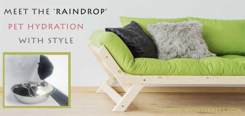 Raindrop-Pet-Hydration-Month