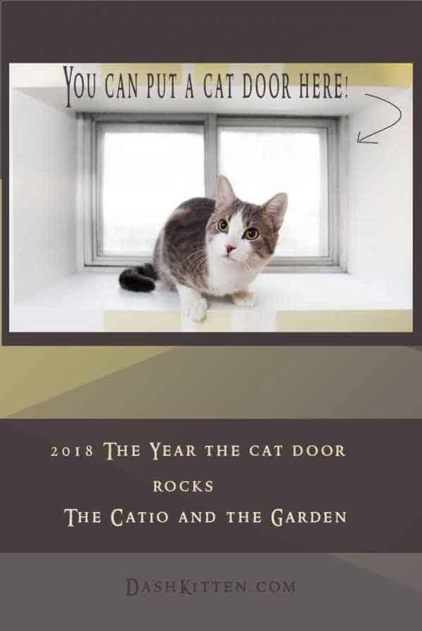 Catio Catflap Post