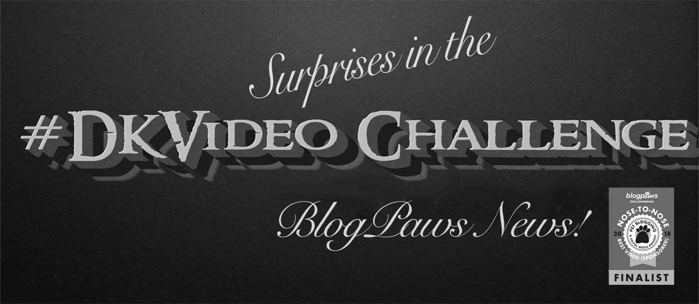 Dash KittenVideo Challenge Entrants at BlogPaws