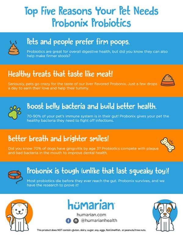 Probiotics for Cats Probonix Graphic