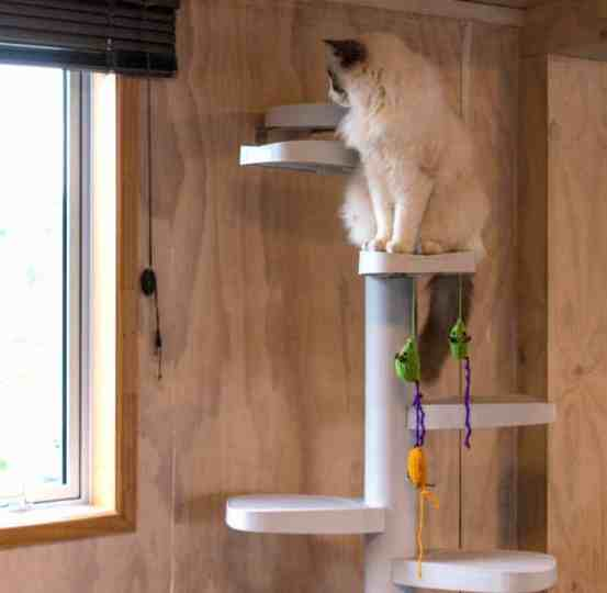 Interior Monkee Tree Cat Ladder