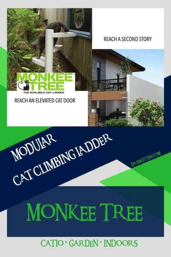 Monkee Tree Pinterest