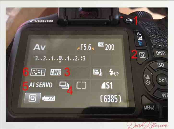 Navigating the back of your Canon EOS 1300D