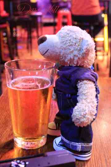 Snapshot of a small bear drinking from a very large glass