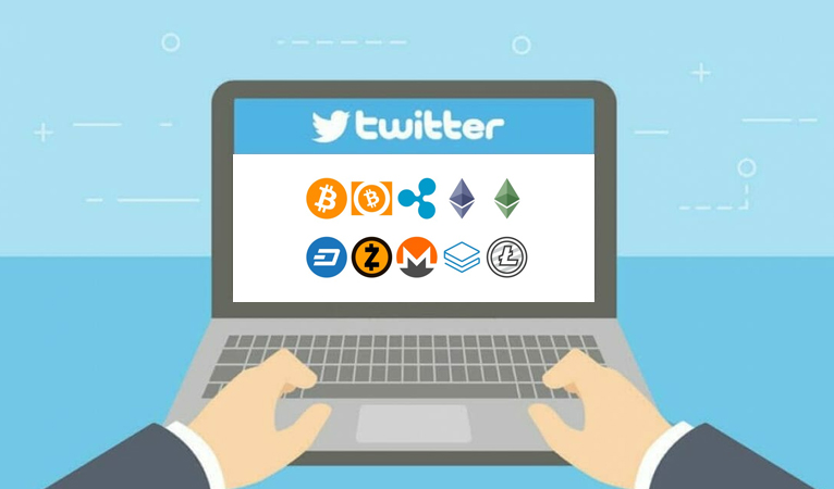 White Blood Cells and Mirrors: Using Twitter Wars to Evaluate a Crypto's Future Success
