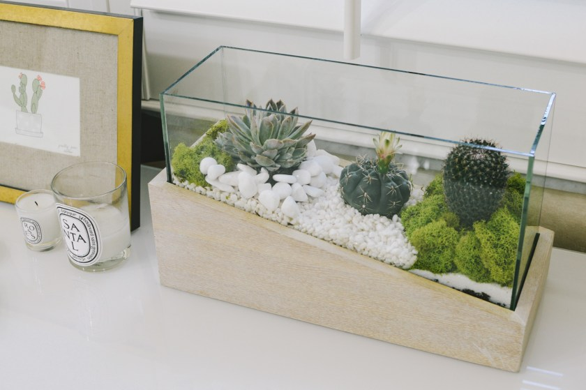 Earth day-DIY terrarium tutorial-miami lifestyle blogger