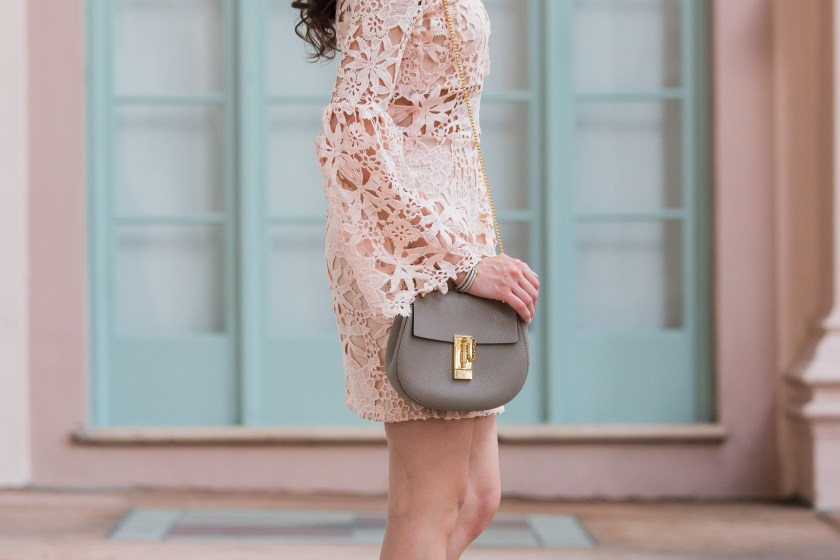 Dash of Panache styling a Blush WILLAMETTE LACE DRESS and Chloe Drew Bag
