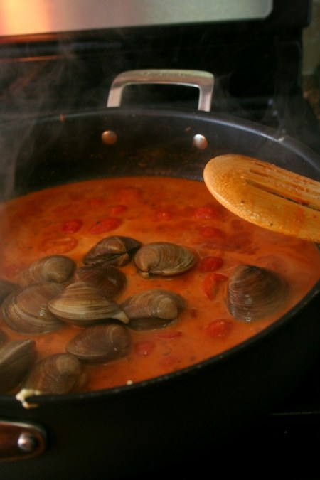 Clams in Tomato Coconut Curry Sauce