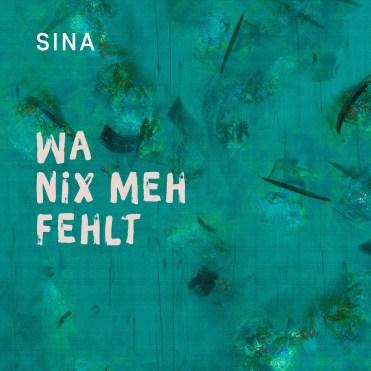 "Die neue Single ""Wa nix meh fehlt"""