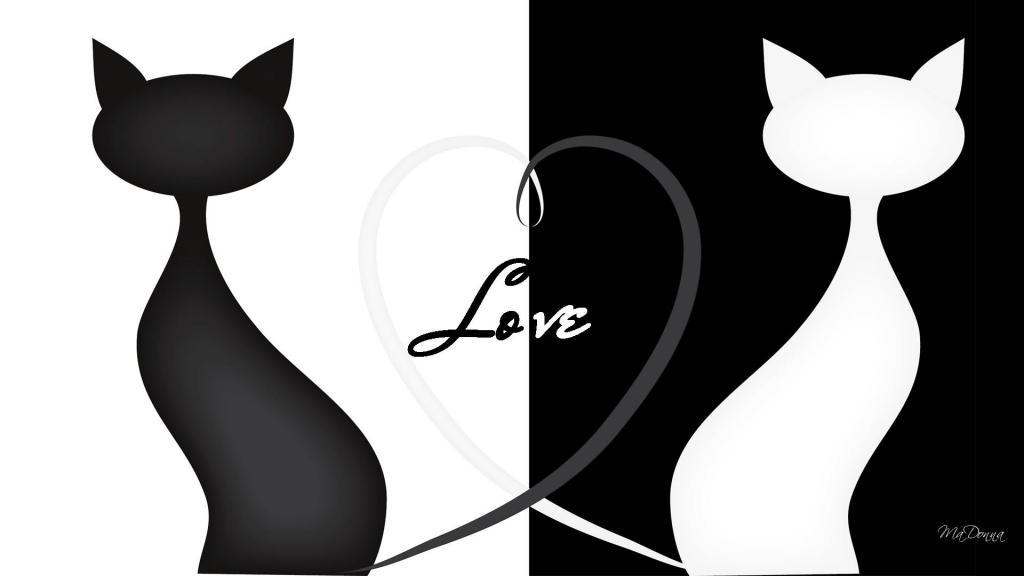 Download Cat Silhouette Love HD desktop wallpaper : Widescreen ...
