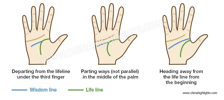 Wisdom Line in the Palm Reading