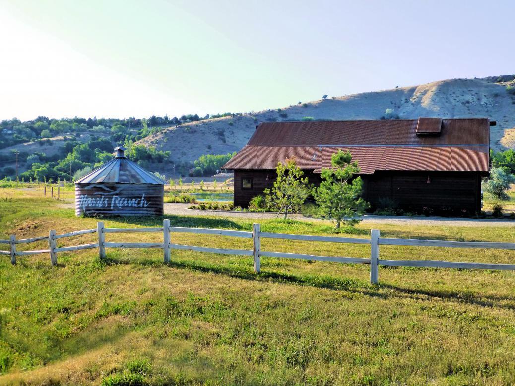 Dallas Harris Estates, Harris Ranch Homes For Sale