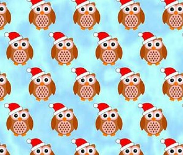 Wallpaper Owl And Cute Image