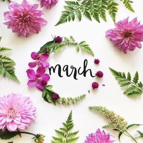 Image result for march goals free image