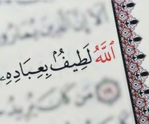 تفسير حلم قراءة القرآن رؤية القرأن الكريم في المنام