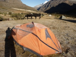 Huaraz et le trek de Santa Cruz