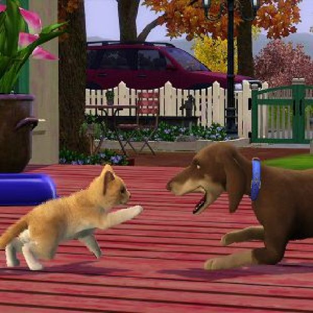 Image result for The Sims 3 Pets