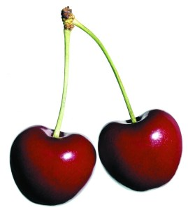 cherries supervised learning examle