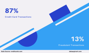 Credit Card Fraudulent Transactions Percentanges