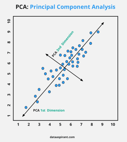 Principal Component Analysis With Dimensions