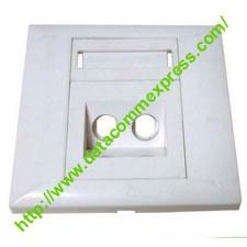 2 Port Fiber Optic Faceplate-ST