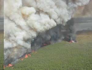 Aerial view of the Whipping Creek Fire in Hyde County.