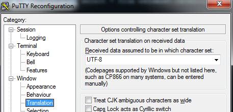 Image of putty translation screen