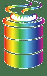 dativerse logo