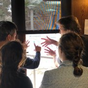 July workshop participants use a bright window to compare multiple graphs on top of each other