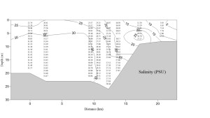 salinity data labeled with numbers and contour lines