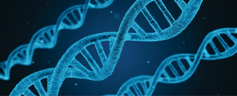 Quantificação fotométrica de DNA e a análise crítica de seu processo de extração!