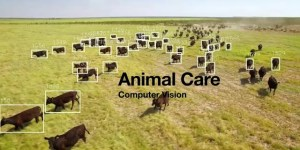 Computer Vision in farming