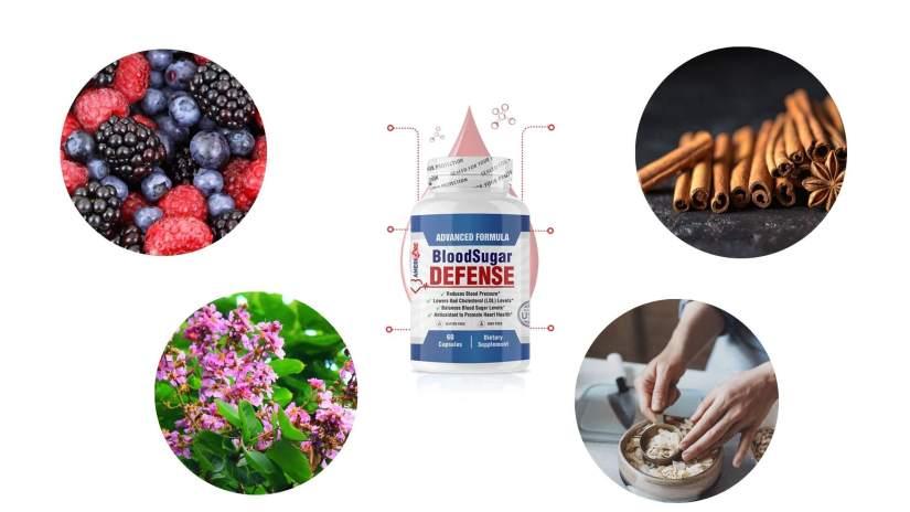 Blood Sugar Defense Supplement Ingredients