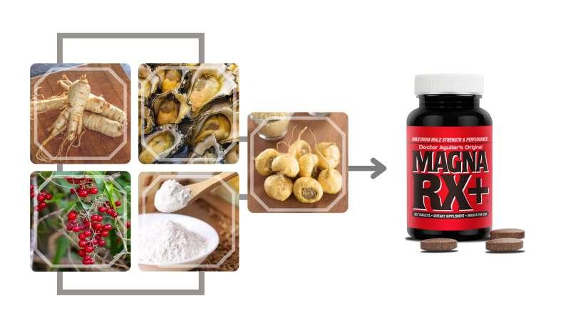 Magna RX+ Ingredients