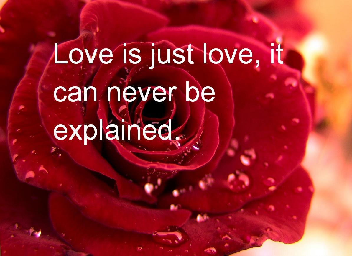 Valentines Day Quotes (Love Quotes)
