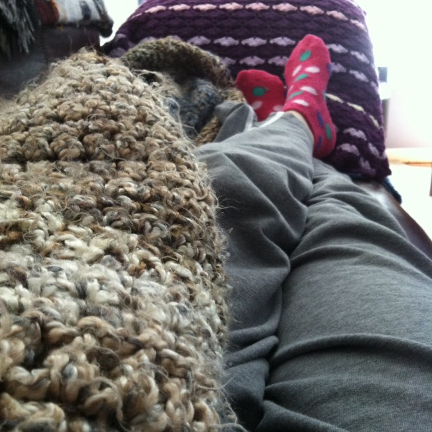 Lazing with my afghans