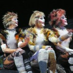 Cats2006LincolnCenterFortCollinsImageTVS