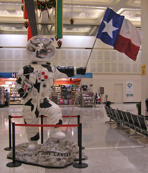 Houston2012AirportImageTVS