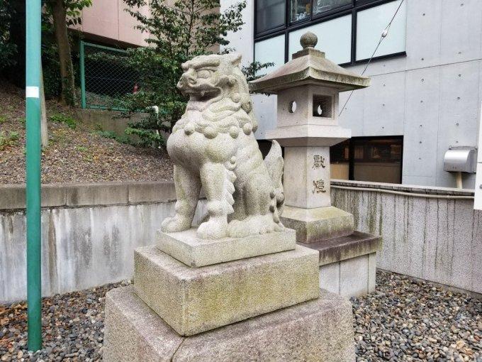白金氷川神社の阿形の狛犬