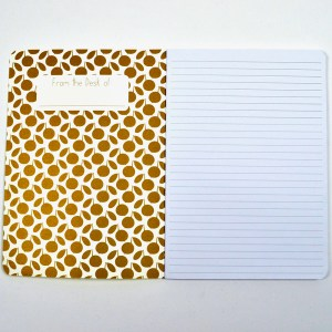 Close up of open notebook with lined page and peach pattern.