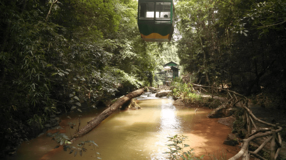 Cable Car In Vietnamese Jungle