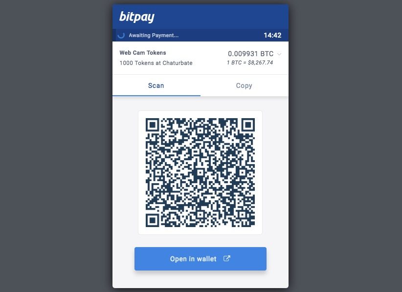 scan and pay with bitcoin