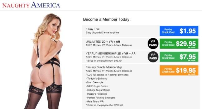naughtyamerica pricing