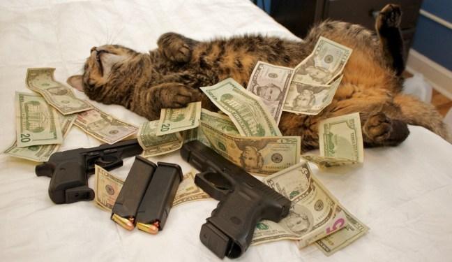 pussy money