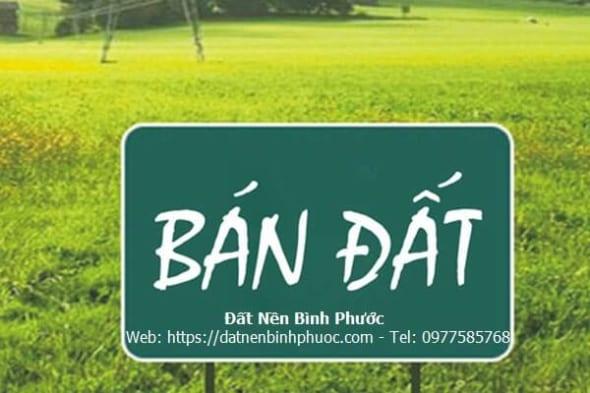 Ban-nha-dat-dong-xoai-dat-nen-binh-phuoc