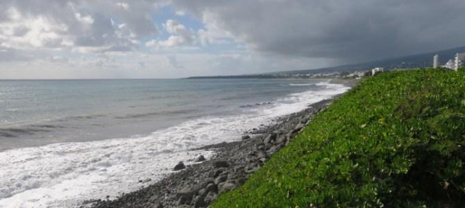 フランス レユニオン島 414DAYS  (MAY/11/2019)