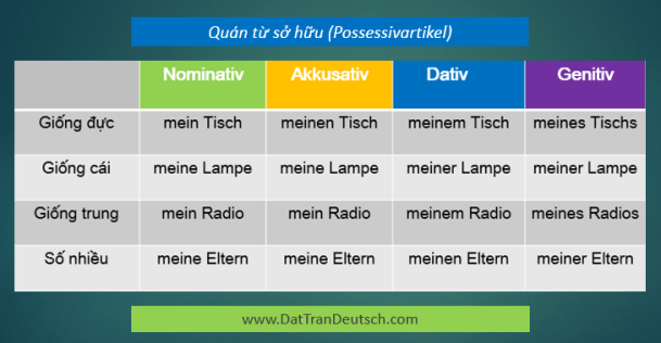 Học tiếng Đức miễn phí với DatTranDeutsch - Bảng quán từ sở hữu